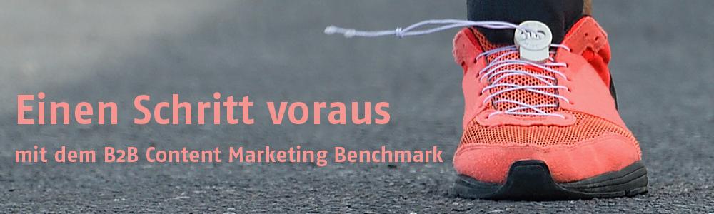 B2B Content Marketing Benchmark